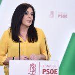 """""""La indolencia y el cálculo electoralista del tripartito de derechas pone en riesgo el desarrollo andaluz»"""
