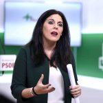 """""""Moreno Bonilla  pone a Andalucía al servicio de los intereses electorales del PP"""""""