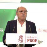 """Juan Cornejo alerta del gobierno """"frágil"""" e""""inestable""""  que padece Andalucía con la extrema derecha"""
